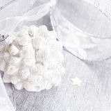 Decorações do Natal com o cone do pinho branco, as estrelas de prata e o si Imagem de Stock Royalty Free