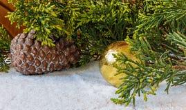 Decorações do Natal, cones do pinho e de árvore do Natal ramo em t Fotos de Stock