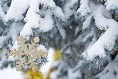Decorações do Natal do floco de neve Fotos de Stock