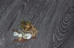 Decorações e shell Imagens de Stock Royalty Free