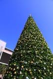 Decorações enormes da árvore de Natal e fundo do céu azul Imagens de Stock