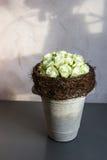 Decorações florais bonitas Fotografia de Stock