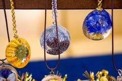 Decorações incomuns, plantas no âmbar, vidro congelado imagens de stock royalty free