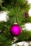 Decorações isoladas da Natal-árvore 2016 anos novos felizes Imagem de Stock