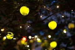 Decoración al aire libre del árbol del ` s del Año Nuevo Fotografía de archivo libre de regalías