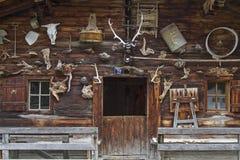 Decoración alpina curiosa del pasto Imágenes de archivo libres de regalías