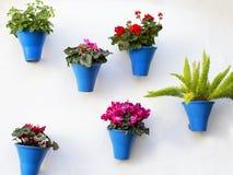 Decoración andaluz con los potes de flores típicos Fotos de archivo libres de regalías