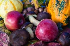 Decoración anual del otoño foto de archivo libre de regalías