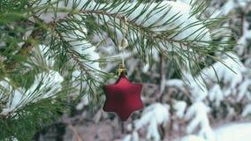 Decoración asteroide de la Navidad que cuelga en rama nevosa del pino almacen de metraje de vídeo