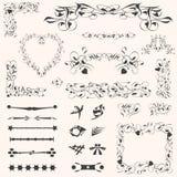 Decoración caligráfica de la paginación de los elementos del diseño Imagen de archivo libre de regalías