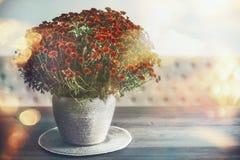 Decoración casera del otoño con el florero y las flores en la tabla, luz del sol fotografía de archivo libre de regalías