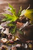 Decoración casera del otoño con las castañas, nueces, canela, leav Fotos de archivo