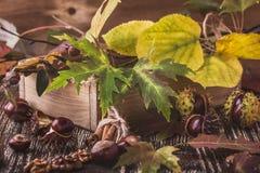 Decoración casera del otoño con las castañas, nueces, canela, leav Imagen de archivo