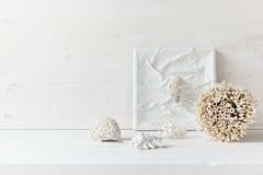 Decoración casera suave; cáscaras y corales en el fondo de madera blanco fotografía de archivo