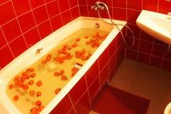 Decoración casera y cuarto de baño moderno más interier del estilo Fotografía de archivo