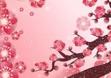 Decoración china del ` s del Año Nuevo para el festival de primavera del flor Foto de archivo