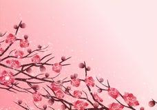Decoración china del ` s del Año Nuevo para el festival de primavera del flor Fotografía de archivo