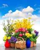 Decoración colorida de las flores de la primavera y de los huevos de Pascua Imagen de archivo