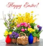 Decoración colorida de las flores del resorte y de los huevos de Pascua Imágenes de archivo libres de regalías