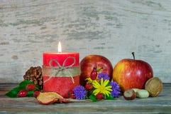Decoración colorida del otoño Fotografía de archivo libre de regalías