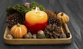 Decoración con los conos, musgo, canela, bellotas, anís de la vela del otoño Fotos de archivo libres de regalías