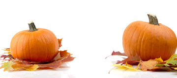 Decoración de calabazas con las hojas de otoño para el día de la acción de gracias en blanco Fotos de archivo libres de regalías