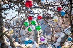 Decoración de cristal coloreada de la Navidad Imagenes de archivo