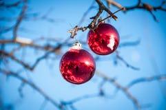Decoración de cristal roja de la Navidad Fotografía de archivo