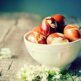 Decoración de Eco Huevos de Pascua adornados con la hierba fresca natural Imágenes de archivo libres de regalías