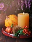 Decoración de la acción de gracias del otoño Foto de archivo