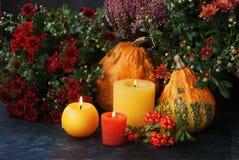 Decoración de la acción de gracias del otoño Imagen de archivo