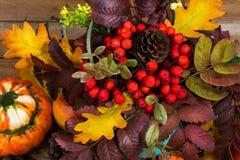 Decoración de la acción de gracias con la calabaza y las bayas de serbal rojas, top Fotos de archivo