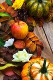 Decoración de la acción de gracias con las calabazas de la manzana, verdes y anaranjadas Foto de archivo libre de regalías