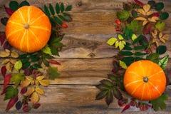 Decoración de la acción de gracias con las hojas y la calabaza en la tabla vieja Imagenes de archivo