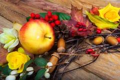 Decoración de la acción de gracias con la manzana y el bérbero Fotografía de archivo libre de regalías