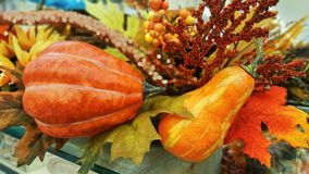 Decoración de la acción de gracias y de Halloween con dos calabazas Caída, otoño Fotografía de archivo libre de regalías