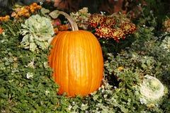 Decoración de la calabaza de otoño Imágenes de archivo libres de regalías