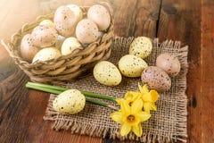 Decoración de la cesta del huevo de Pascua en la madera vieja con efecto luminoso Fotografía de archivo libre de regalías