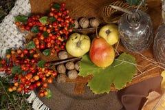 Decoración de la comida campestre del otoño Imágenes de archivo libres de regalías