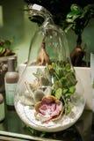 Decoración de la composición de la flor en florero Fotografía de archivo