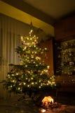 Decoración de la escena de la natividad debajo del árbol de navidad encendido Fotos de archivo