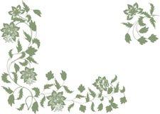 Decoración de la esquina floral verde en blanco stock de ilustración