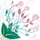 Decoración de la flor con las rosas y los rizos Foto de archivo libre de regalías
