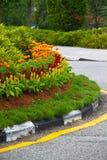 Decoración de la flor a lo largo del encintado del camino Fotografía de archivo