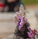 Decoración de la mariposa Imagen de archivo