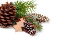 Decoración de la Navidad con el árbol de abeto y conos aislados en un blanco Fotos de archivo libres de regalías