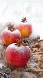 Decoración de la Navidad con la manzana Imagenes de archivo