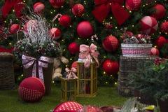 Decoración de la Navidad con las bolas, flores, cestas, árbol con el lig Imagen de archivo