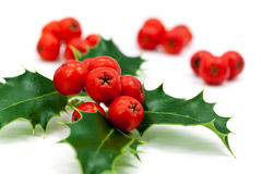 Decoración de la Navidad con las hojas y las bayas del acebo Fotos de archivo libres de regalías