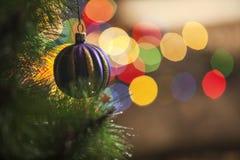 Decoración de la Navidad con las ramas y las luces del abeto imagenes de archivo